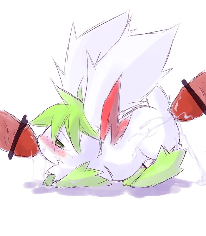 to how form sky get shaymin oras Imma deck you in the schnoz
